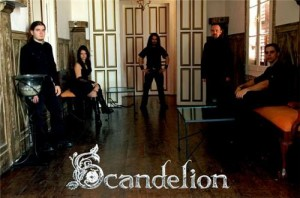 scandelion04