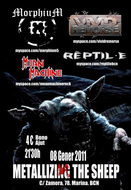 Metallizing the sheep – Barcelona – 08/01/11