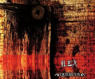 ILEX – Quercus, 2012