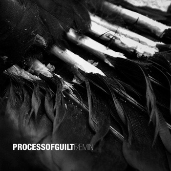 PROCESS OF GUILT – FÆMIN , 2012 (POR)