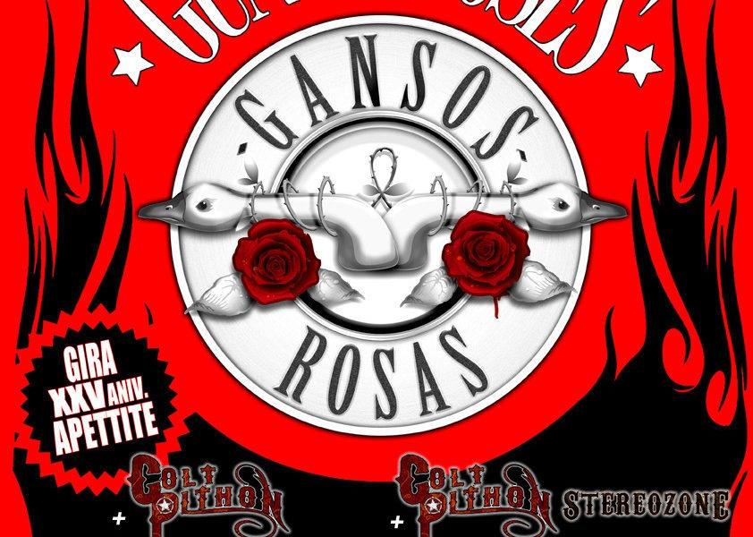 GANSOS ROSAS – En concierto por Murcia y Valencia