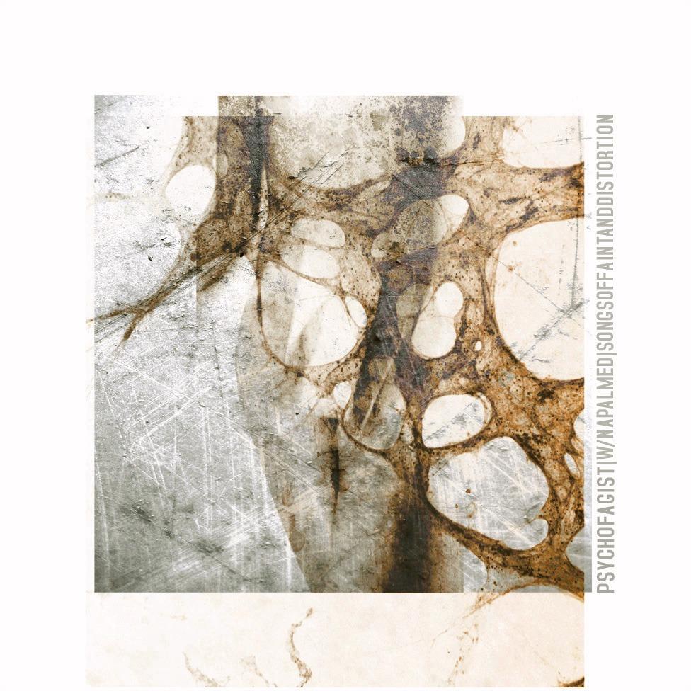 PSYCHOFAGIST (ITA) – Songs Of Faint And Distortion, 2013