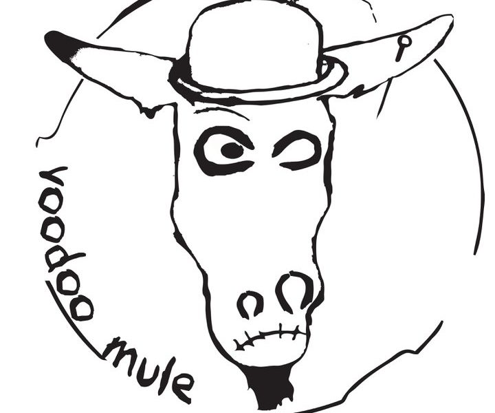VOODOO MULE – DIAMOND ROCK – BUDASAM