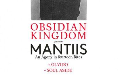 OBSIDIAN KINGDOM – ROCK'ANTENA ROLL – TWILIGHT FORCE (SUE)