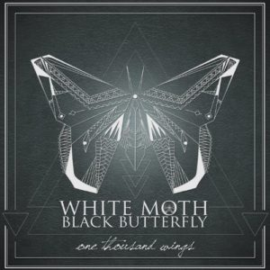 whitemothblackbutterfly01