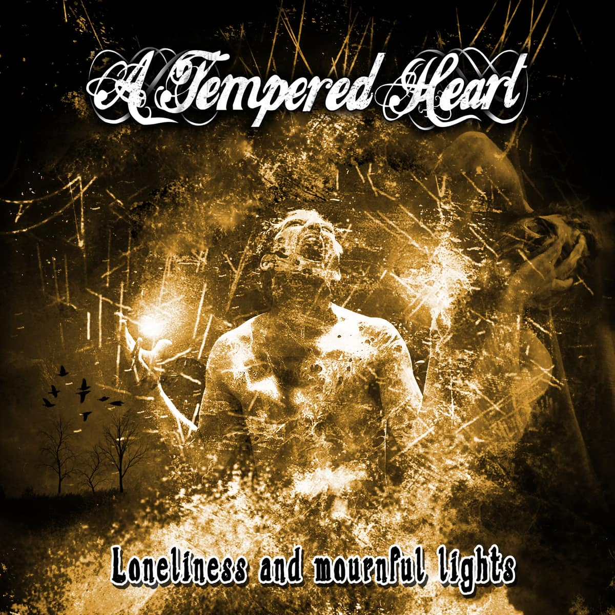 A TEMPERED HEART – Loneliness and mournful lights, 2014