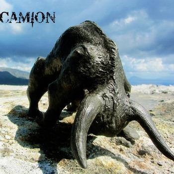CAMION (CHE) – Bulls, 2014