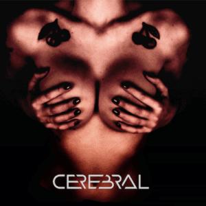 cerebral06