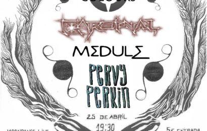 I Progstureo Metal Fest