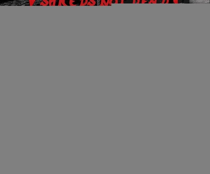 SKULL FIST – VI CULEBRA ROCK – STORMHOLD (SWE)