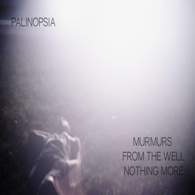 palinopsia01