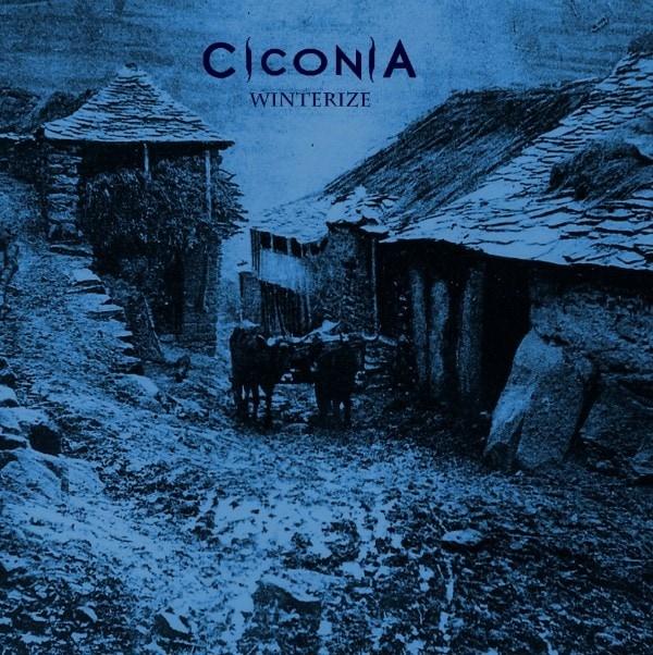 CICONIA – Winterize, 2016