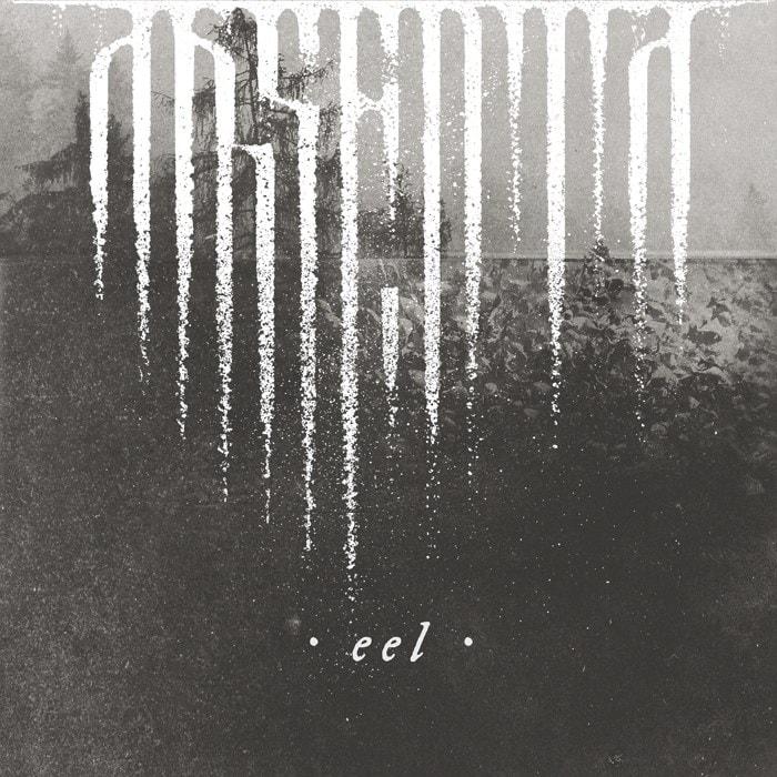 ABSENTA – Eel, 2016