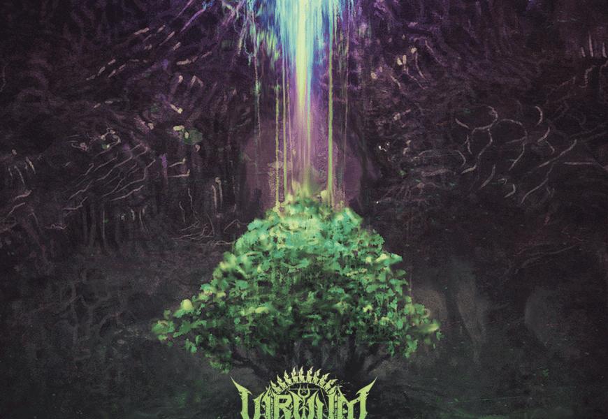 VIRVUM (CHE) – Illuminance, 2016