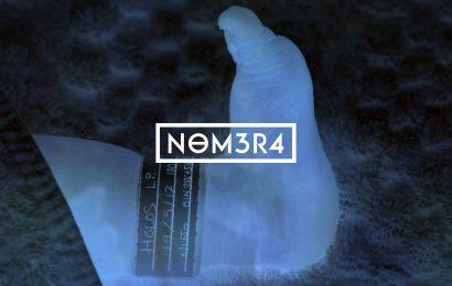 NOMERA – Holos, 2017