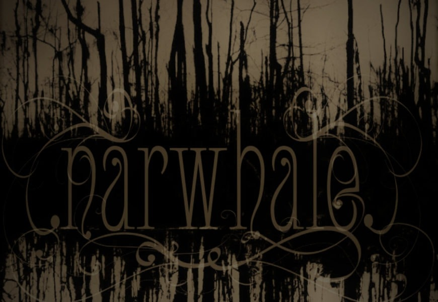 NARWHALE – Narwhale, 2017