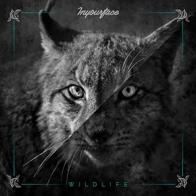 INYOURFACE (ESP) – Wildlife, 2018