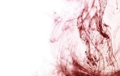 VIDRES A LA SANG (ESP) – Set de sang, 2018