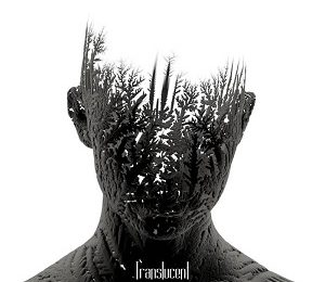 SOLLAR (PRT) – Traslucent, 2018