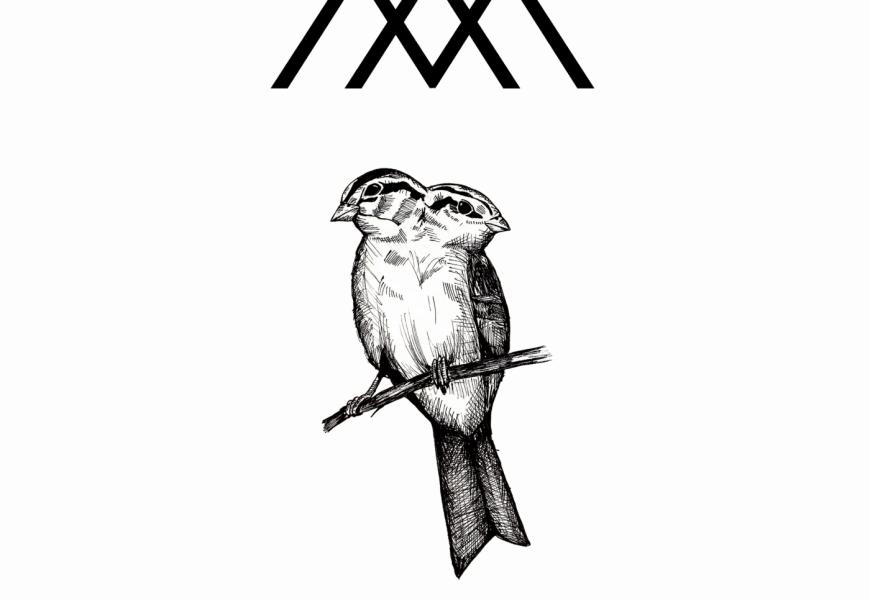 MANGATA (ECU) – El lenguaje de los pájaros, 2020