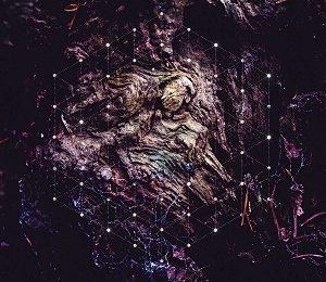 'Unfold the God man' de PSYCHONAUT (BEL) en full streaming