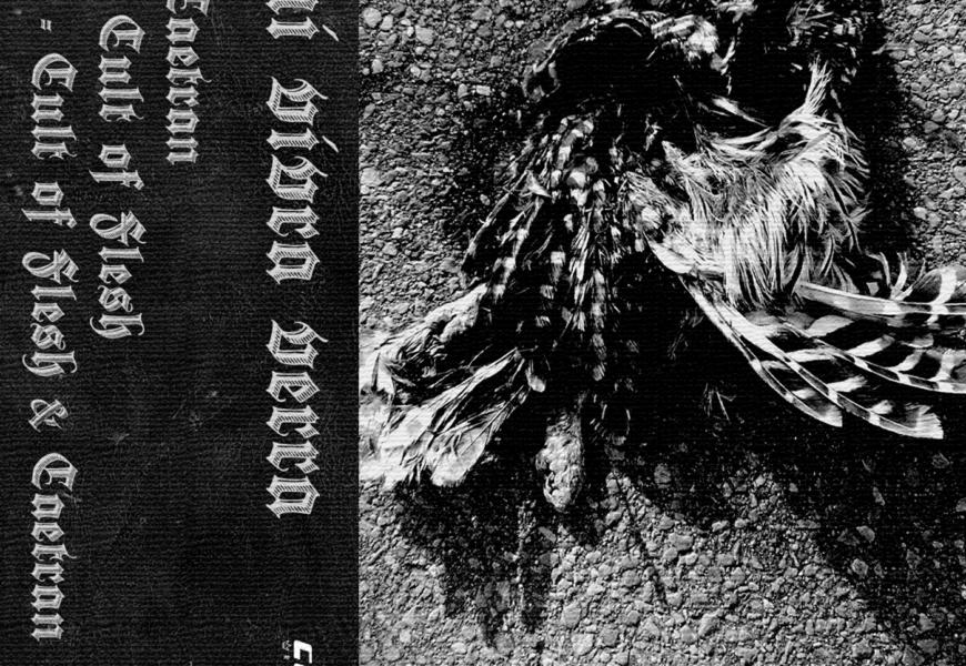 CULT OF FLESH (ESP) / CAETRAN (ESP) – Qui vivra verra (split), 2019